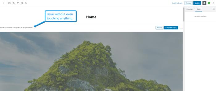 WordPress Issue Info
